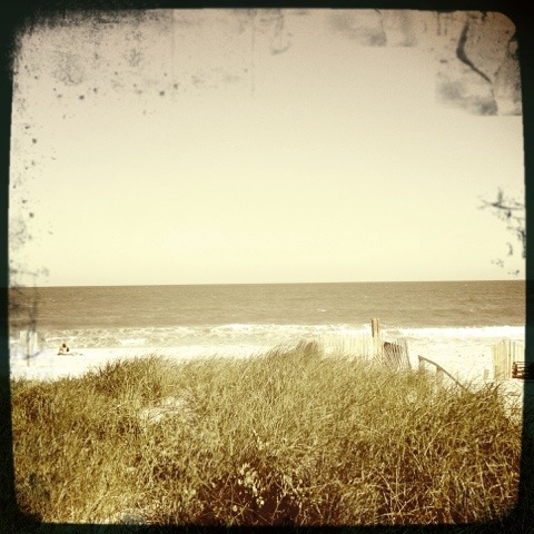 Fire Island dunes and beach